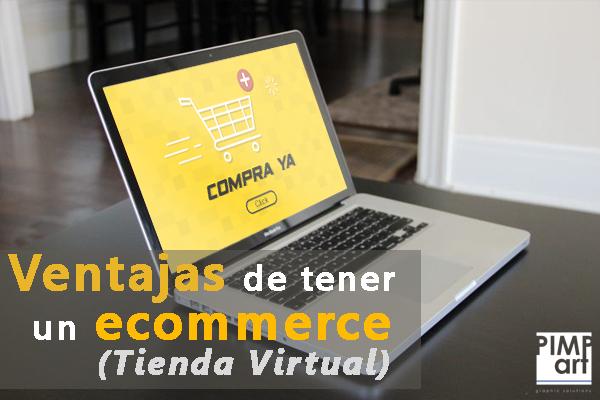 Ecomerce